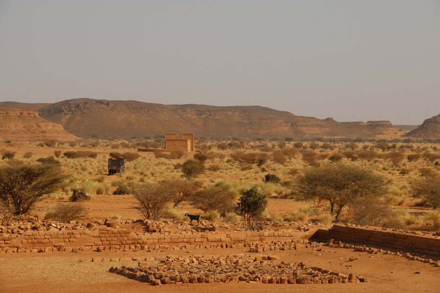 View from the Great Enclosure of Musawwarat across the main channel of Wadi es-Sufra towards the Lion Temple (photo: Claudia Näser)