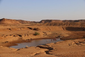 The basin of the Great Hafir at Musawwarat still holds water up to several months after the rainy season (photo: Claudia Näser)